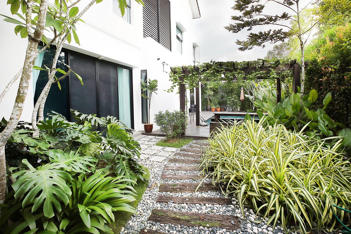 裏庭の専用プール